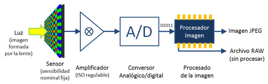 Esquema amplificación ISO variable